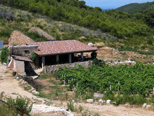 vineyard vis croatia, bluemotion yacht charter, sailing in croatia